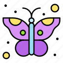 butterfly, insect, moth, spring, season