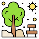 branch, natural, nature, summer, sun