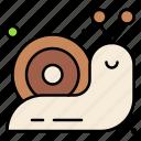 mollusc, slow, slug, snail, spiral