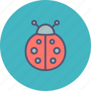 autumn, bug, insect, ladybug, spring icon