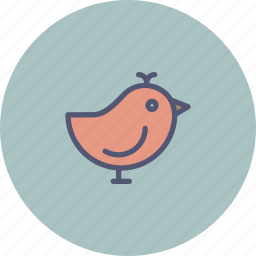 bird, easter, sparrow, spring, twitter icon