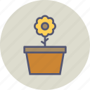 blossom, ecology, flower, gardening, pot, spring, sunflower icon