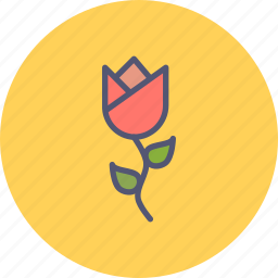 blossom, ecology, floral, flower, nature, spring, tulip icon