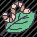 worm, leaf, nature, spring, garden
