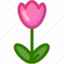 flower, garden, nature, plant, spring, tulip, yumminky icon