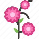 blossom, flowering, garden, spring, tree, twig, yumminky icon