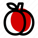 apricot, food, fresh, fruit, healthy, juicy icon