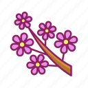 bloom, blossom, flower, spring icon