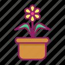 floral, flower, garden, spring