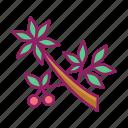 cherries, cherry, spring, tree icon