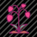 flower, garden, plant, spring icon