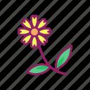 flower, leaf, plant, spring icon