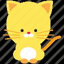 animal, cat, cute, pet, spring