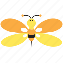 animal, bee, flower, honey, insect, spring