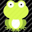 amphibian, animal, frog, green, nature