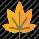autumn, foliage, leaf, spring icon