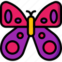 butterfly, spring, easter, bug