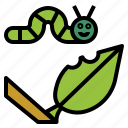 butterfly, caterpillar, leaf, insect, worm icon