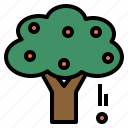 flora, fruit, plant, tree icon