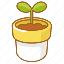 grow, growth, plant, pot, shoot, spring, sprout