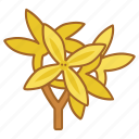 bloom, flower, forsythia, nature, spring icon