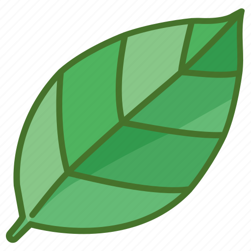 leaf, leaves, natural, nature, spring icon