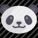 china, chinese, panda icon
