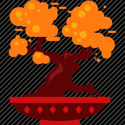 bonsai, china, chinese icon