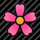 blossom, botany, flower, garden, plant, spring icon