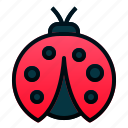 animal, bug, garden, insect, lady, spring icon