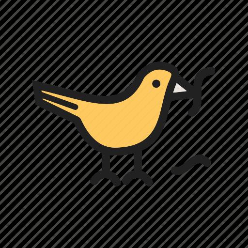 animal, bird, nature, spring, wild, wildlife, worms icon