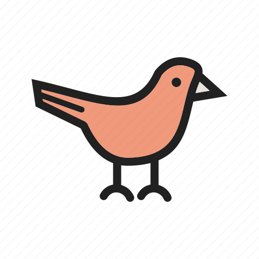 animal, bird, birds, flowers, garden, nature, spring icon