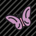 beauty, butterflies, butterfly, flying, garden, nature, spring