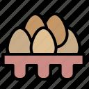 spring, breakfast, egg, eggs, eggshell, food