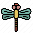 spring, bug, dragonfly, insect, nature