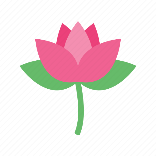 beautiful, beauty, flower, leaves, lotus, nature, spring icon
