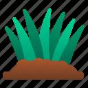 spring, botany, farm, garden, gardening, grass icon