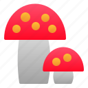 botany, garden, mushroom, plant, spring