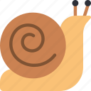 spring, easter, bug, snail icon
