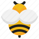 bee, insect, honey, nature icon