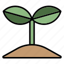 sprout, plant, nature, ecology, garden, leaf, spring