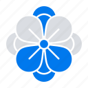 anemone, spring, flower icon