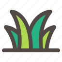 grass, nature, plant, spring time, summer icon