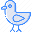 bird, chick, easter, spring icon