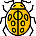 insect, ladybug, spring icon