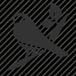 animal, bird, branch, environment, nature, spring, twitter icon