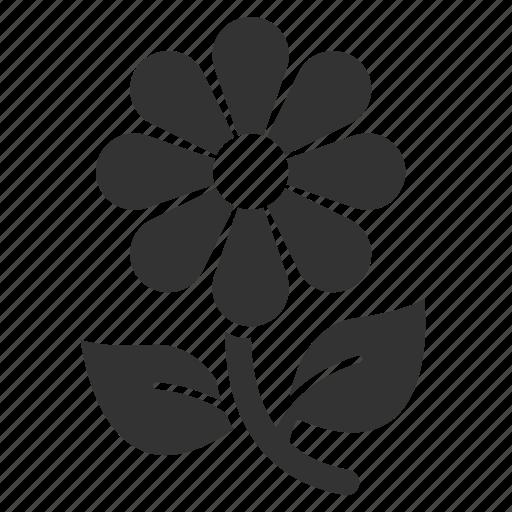 bloom, blossom, flower, garden, gardening, nature, spring icon