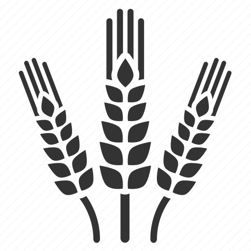 agriculture, barley, cultivation, farm, planting, rice, spring icon