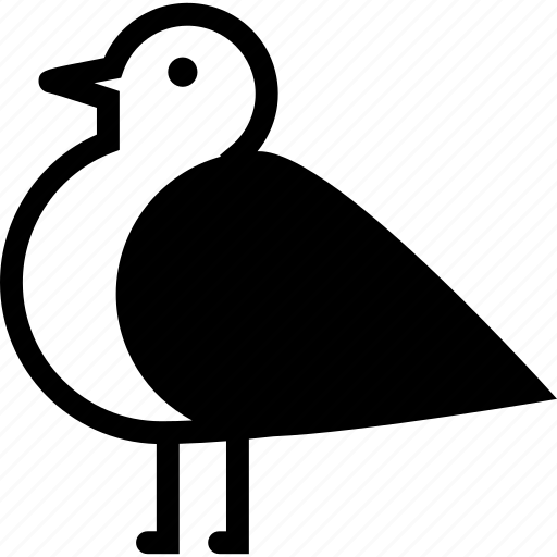 bird, nature, pigeon icon