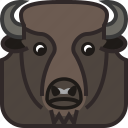 animals, bison, head, horn, square, wild, yumminky icon